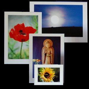Fleeting world cards home of beautiful greetings cards and photos cards prints framed prints m4hsunfo